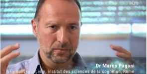 Imagerie cérébrale et mécanismes d'action de l'EMDR